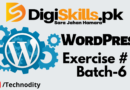 WordPRess Ex 4 Batch 6
